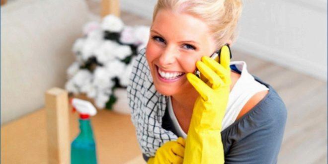 Система Флай леди — помощница в домашних делах