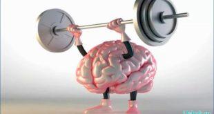 Как вынудить мозг работать и думать стремительнее