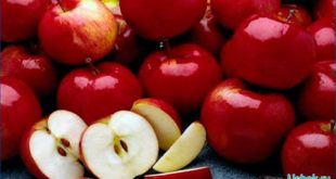 Большое количество яблок не бывает